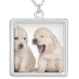 Golden Retriever puppies (4 weeks old) Silver Plated Necklace