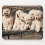Golden Retriever Puppies Mouse Pad