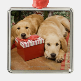 Golden retriever puppies with christmas gift Silver-Colored square decoration