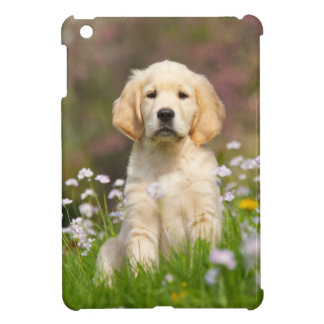 Golden Retriever puppy a cute Goldie Case For The iPad Mini