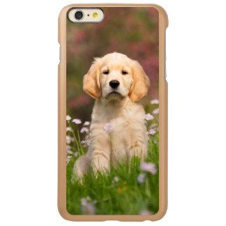 Golden Retriever puppy a cute Goldie iPhone 6 Plus Case