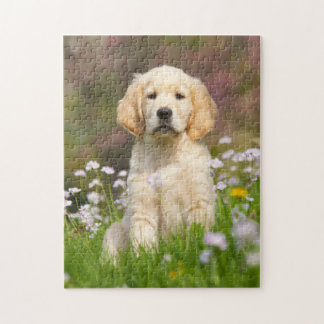 Golden Retriever puppy a cute Goldie Puzzle