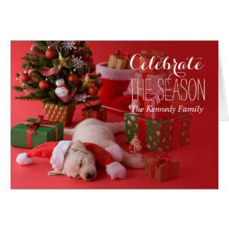 Golden Retriever Puppy and Christmas Card