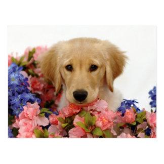 Golden Retriever Puppy and Flowers Postcard