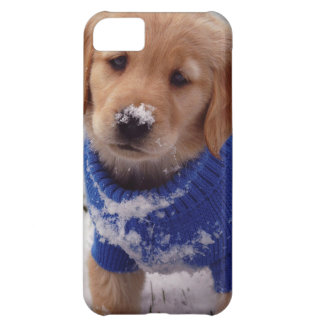 Golden Retriever Puppy iPhone 5C Case