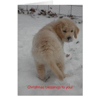 Golden Retriever Puppy Christmas Card