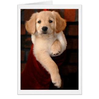 Golden Retriever Puppy Christmas Stocking Greeting Card