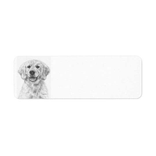 Golden Retriever Puppy Cody
