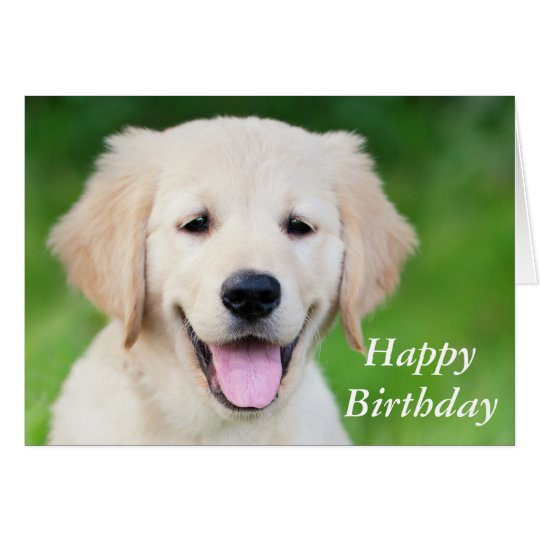 Golden retriever puppy cute custom birthday card