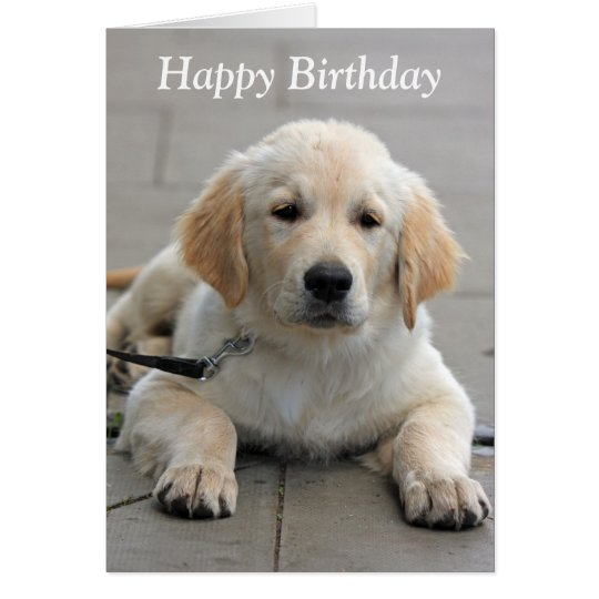 Golden Retriever puppy cute photo birthday card
