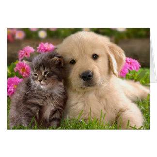 Golden Retriever Puppy Dog And Kitten Blank Card