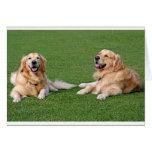 Golden Retriever Puppy Dog Blank Note Card