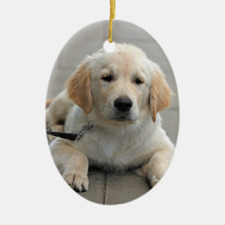 Golden Retriever puppy dog cute beautiful photo Christmas Ornament
