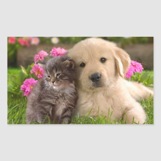 Golden Retriever Puppy Dog & Kitten  Sticker