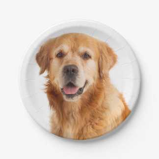 Golden Retriever Puppy Dog Wedding Party Paper Plate