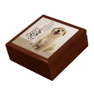 Golden Retriever Puppy Gift Box
