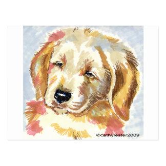 Golden Retriever Puppy Head Post Cards