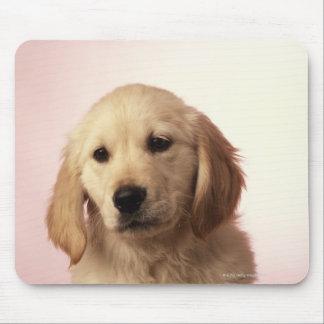 Golden retriever puppy mouse mat
