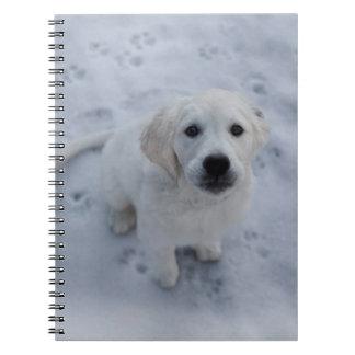 Golden Retriever Puppy Notepad Notebooks