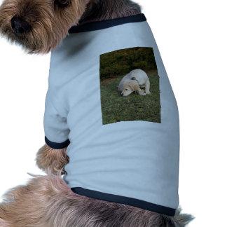 Golden Retriever Puppy Sniffing Doggie Shirt