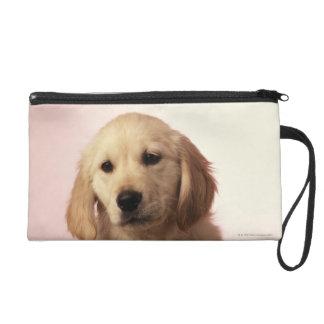Golden Retriever Puppy Wristlet