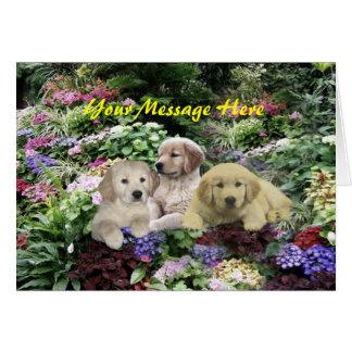 Golden Retriever Pups In Garden Greeting Card