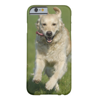 Golden retriever running through meadow barely there iPhone 6 case