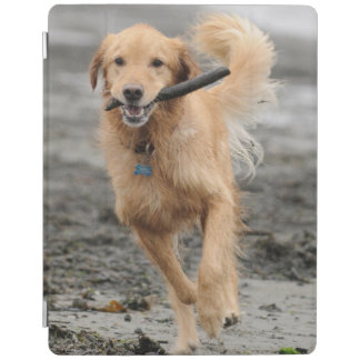 Golden Retriever Running With  Stick In Mouth iPad Cover