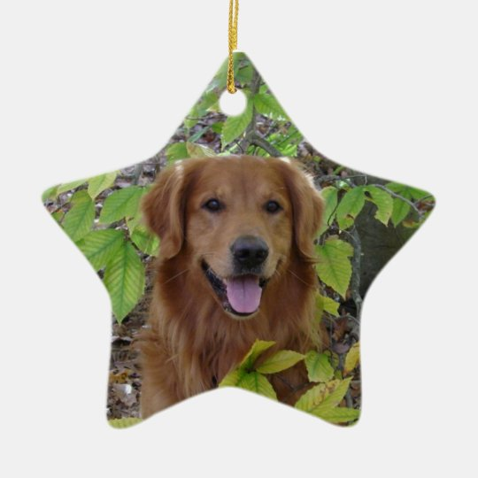 GOLDEN RETRIEVER STAR ORNAMENT