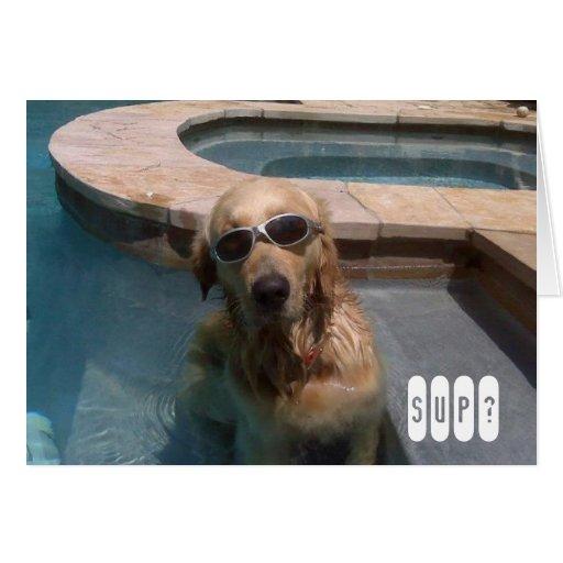Golden Retriever Swimming Birthday Card