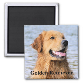 Golden Retriever Text Magnet