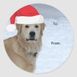 Golden Retriever To/From Christmas stickers