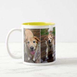 Golden Retriever Two-Tone Mug