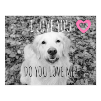 Golden retriever VALENTINE Postcard