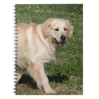Golden Retriever Walking Notebook