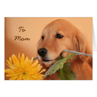 Golden Retriever With Flower Mother's Day Card