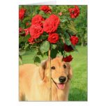 Golden Retriever With Roses Thinking of You Greeting Card