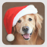 Golden Retriever With Santa Hat Square Stickers