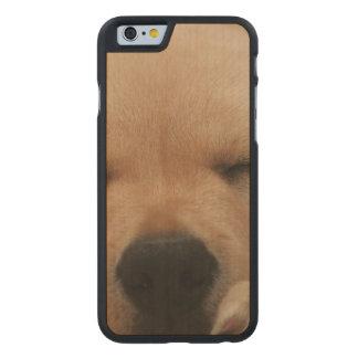 Golden Retriever Carved® Maple iPhone 6 Case