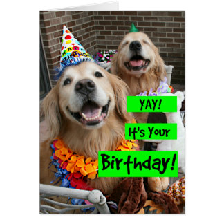 Golden Retriever Yay Its Your Birthday Greeting Card