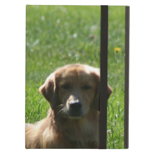 Golden Retrievers Case For iPad Air