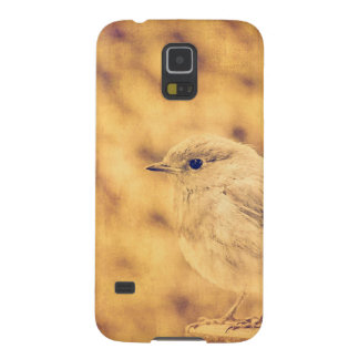 Golden Robin Cases For Galaxy S5