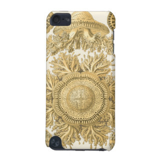 Golden Sea Creatures iPod Touch (5th Generation) Cases