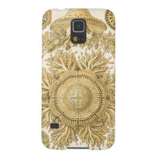 Golden Sea Creatures Galaxy S5 Cover