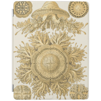 Golden Sea Creatures iPad Cover