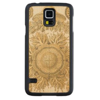 Golden Sea Creatures Maple Galaxy S5 Case