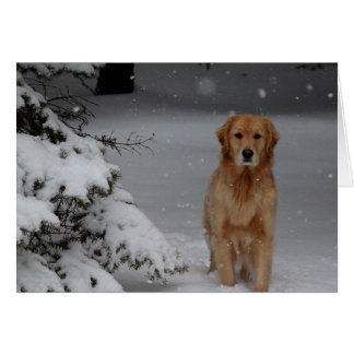 Golden Snowy Christmas Card