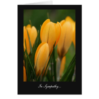 Golden Spring Crocuses - In Sympathy Greeting Card