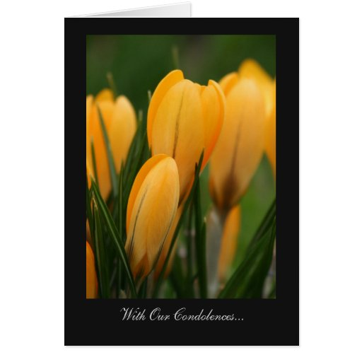Golden Spring Crocuses - With Our Condolences Greeting Card