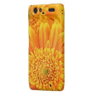 Golden Sunflower Motorola-Droid-RAZR Motorola Droid RAZR Cases